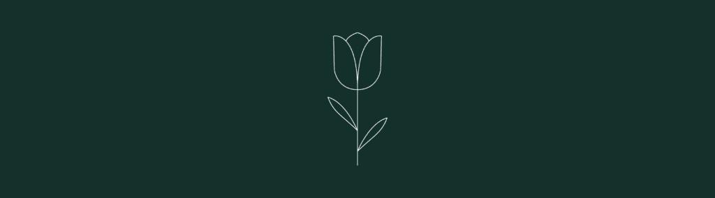 about us tulipano_Tavola disegno 1-min